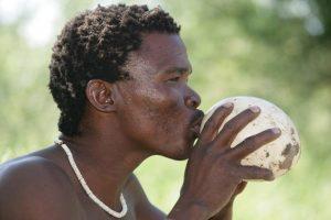 Bushman_drinking2