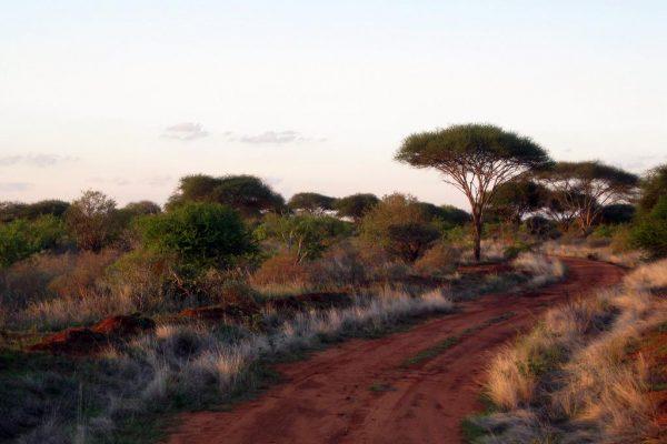 Wunderschöne Naturlandschaften während Ihrer Kenia Flugsafari.