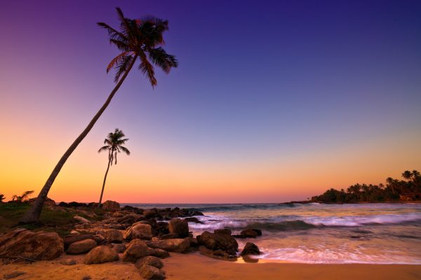 Auch wunderbare Strände erwarten Sie auf Ihrer Sri Lanka Busrundreise.