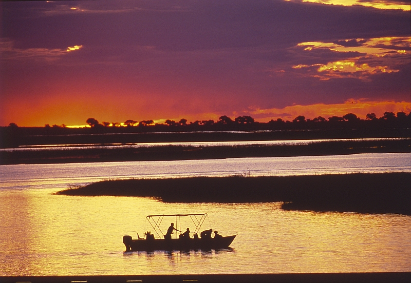 bots_chobe_sunset_cruise