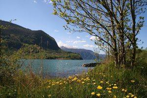 norwegen-landschaft4