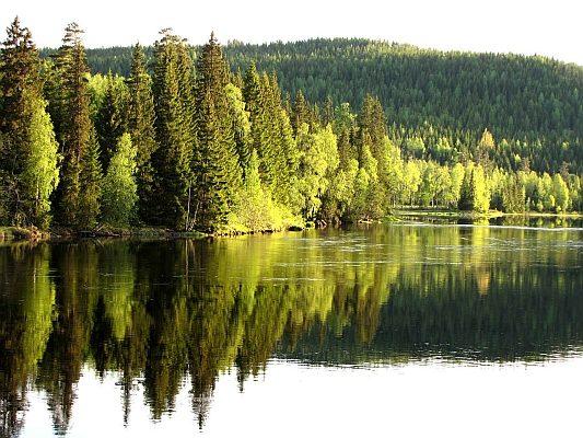 Unglaublich schöne Natur in Schweden während Ihrer Aktivreise.