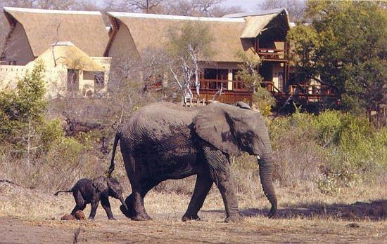 Reisen südliches Afrika