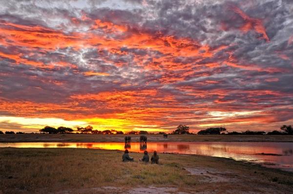 zim_sunset